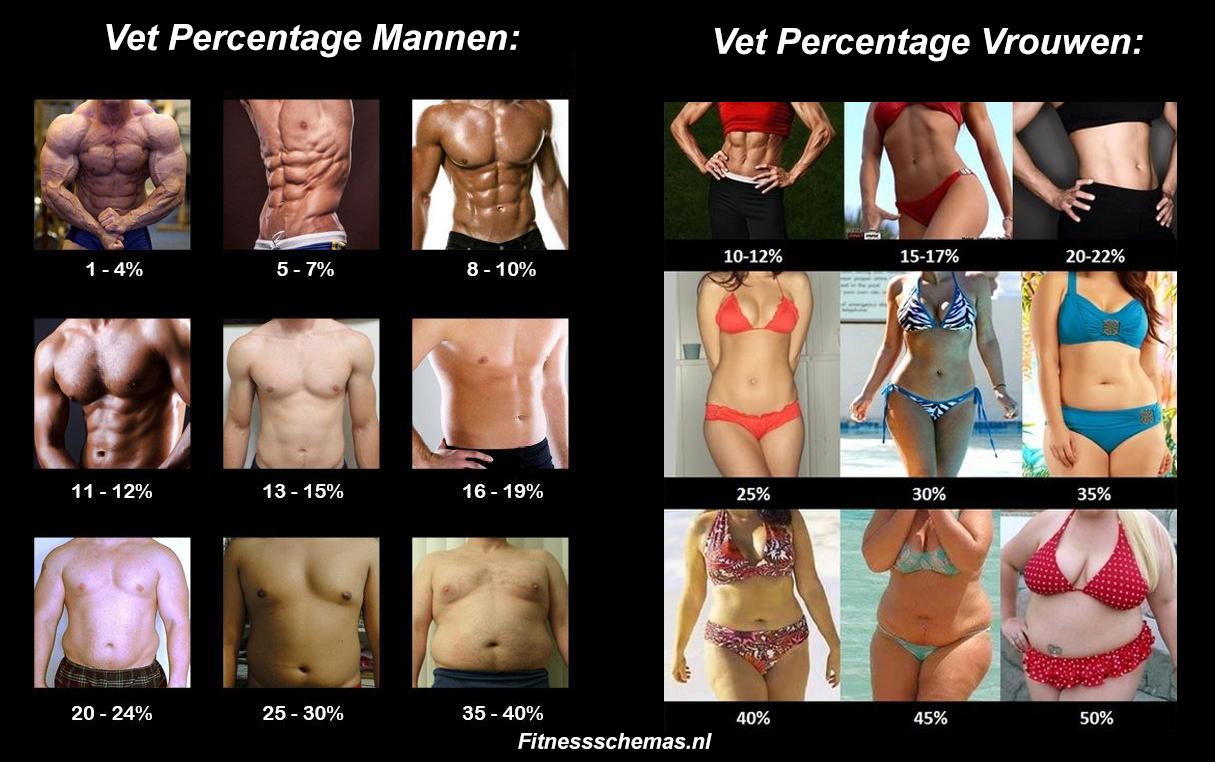 aankomen in spiermassa vrouw